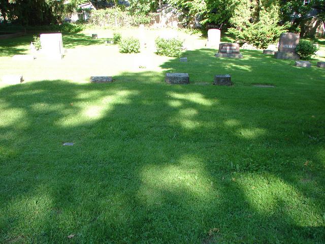 Mae Sorenson plot (no marker)